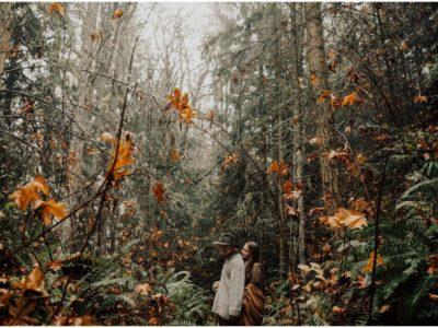 Washington Forest Lovers